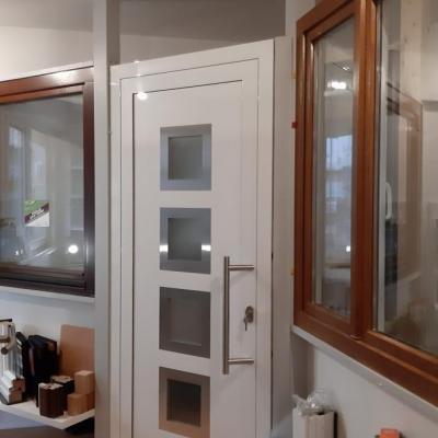 Haustür PaXPlan, Kunststofffenster Holzdekor golden oak, Holzfenster PaXPremium